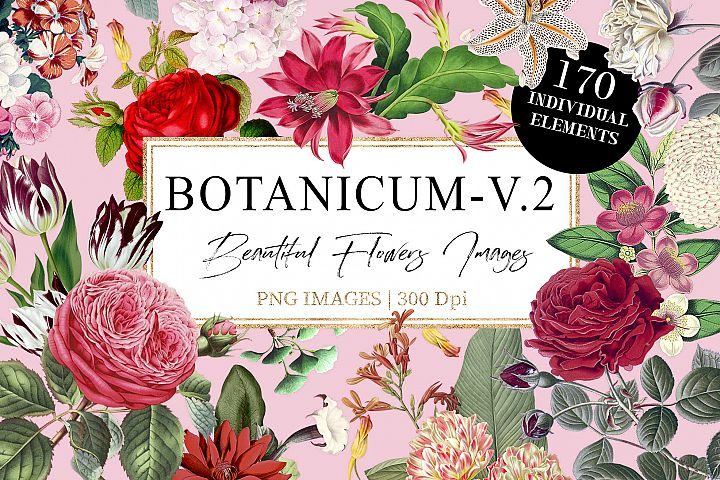 Botanicum - V.2|Elements Botanic