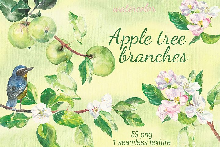 Watercolor Apple tree branches clip art