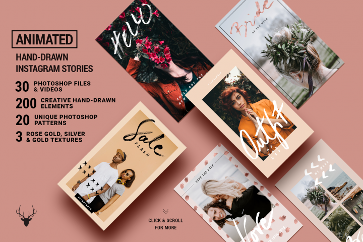 ANIMATED Rose Gold Instagram Stories - Animated Creative & Modern Instagram Story Templates