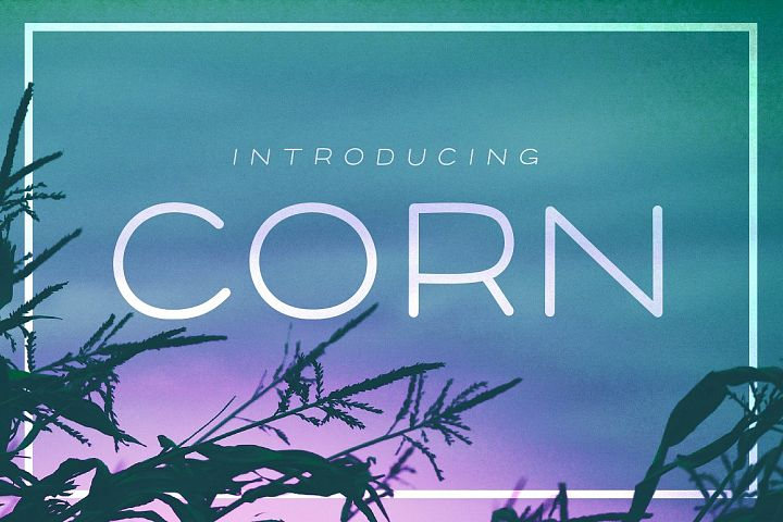 Corn - A clean headline font with Style