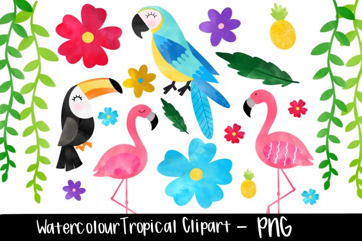 Watercolor Tropical Flamingo Clipart Bundle