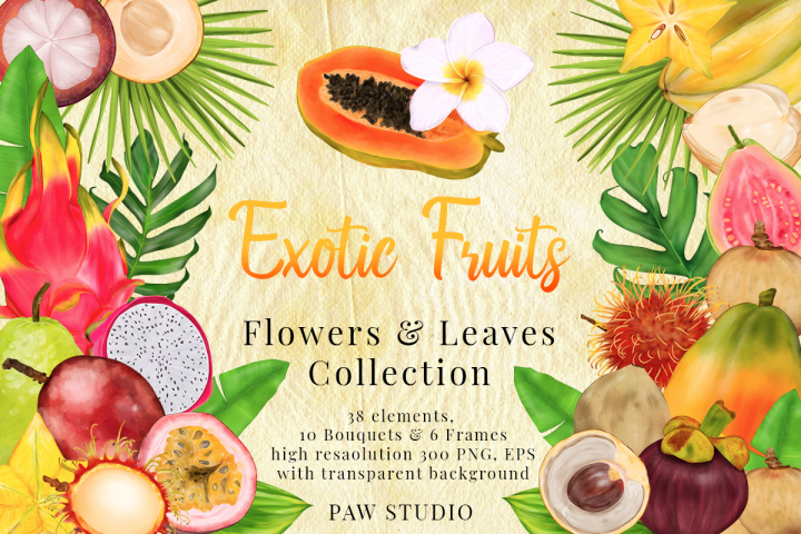 Tropical Fruits, Flowers, Leaves. Exotic Frames Bouquets