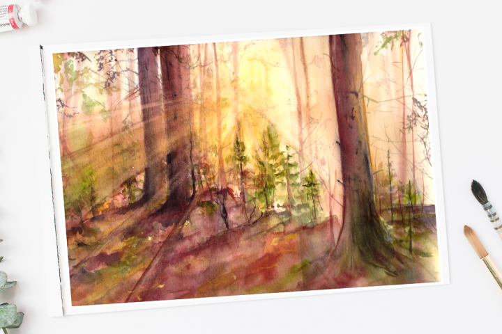 Sun in the Forest - Illustration / Print