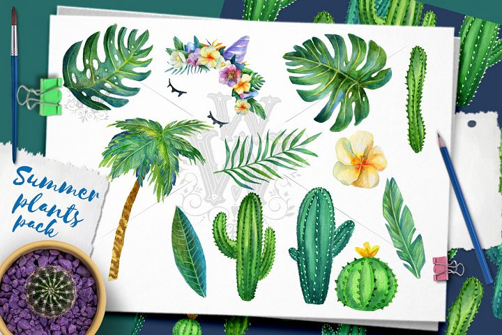 Summer plants, tropical palm leaves, cactus seamless pattern