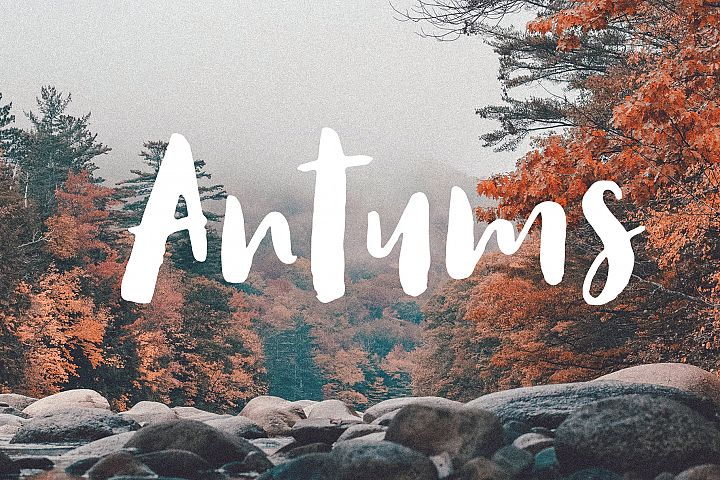 Antums Brush Fonts