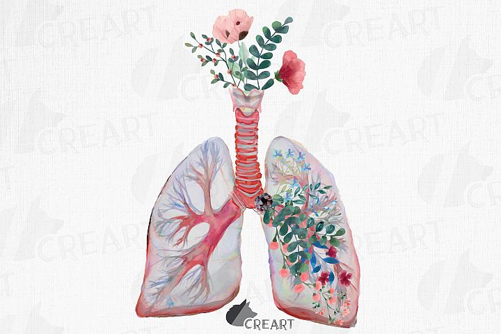Blush and green floral anatomical lungs printable decor desi