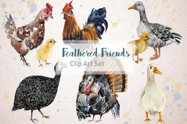 Feathered Friends - Watercolor Clip Art