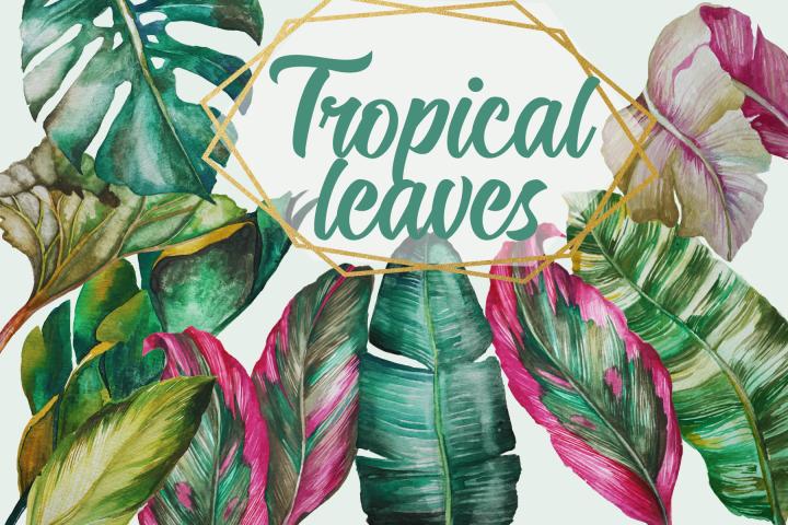 Tropical leaves watercolor clip art