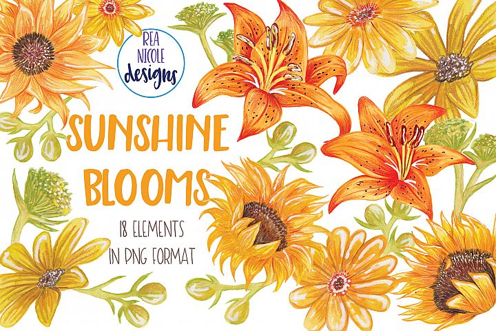 Summer Sunshine Blooms clipart