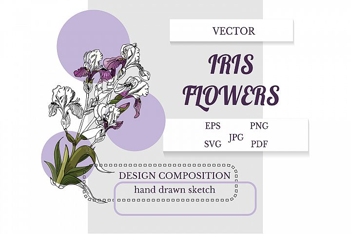 Vector design composition of hand drawn sketch of iris.