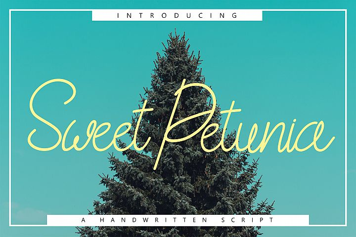 Sweet Petunia Handwritten Script