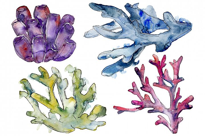 Corals seascape watercolor png