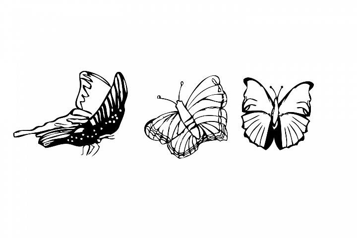 Summer Butterflies, digital Stamp, Print and cut,