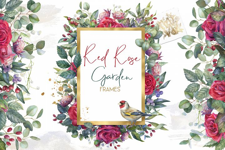 Red Roses watercolor frames clipart, marsala wedding png