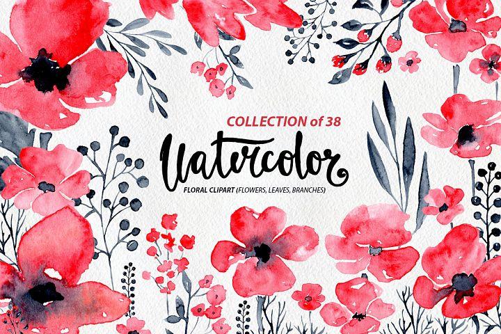 38 Watercolor poppy flowers, leaves