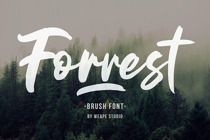 Forrest - Brush Font