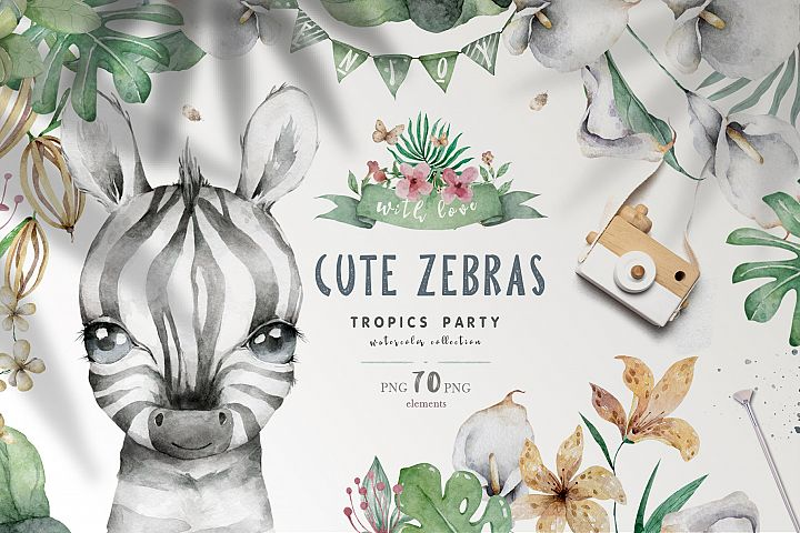 Cute Zebras Watercolor Jungle