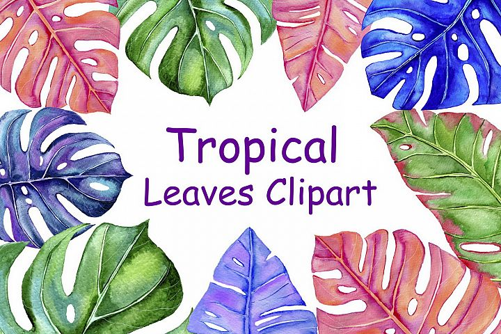 Watercolor tropical leaves clipart set
