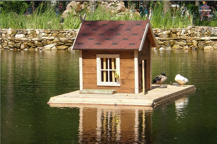 Pond with bird house
