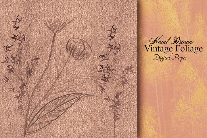 Hand drawn Vintage Foliage paper. Nature drawings artwork.