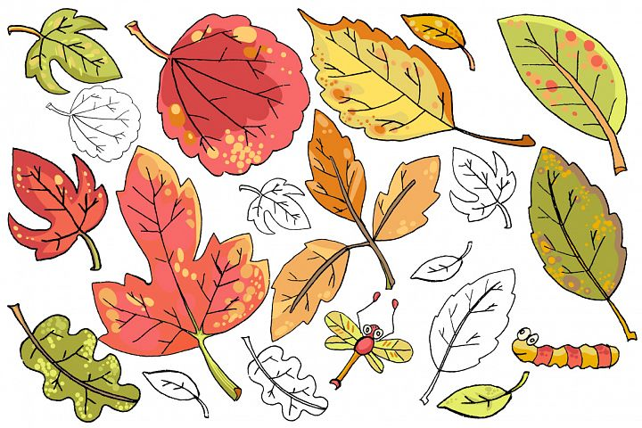 Vector hand drawn leaves example 2