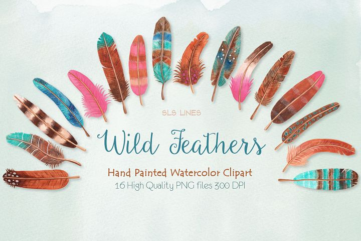 Wild Pink, Blue & Brown Feathers Watercolors