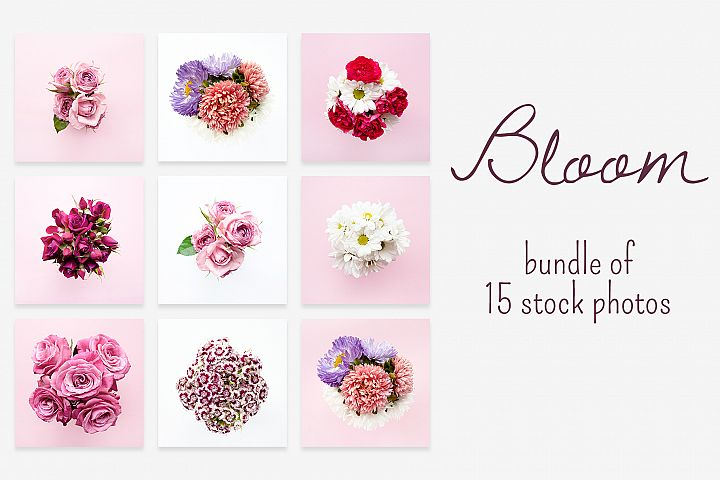 BLOOM photo bundle