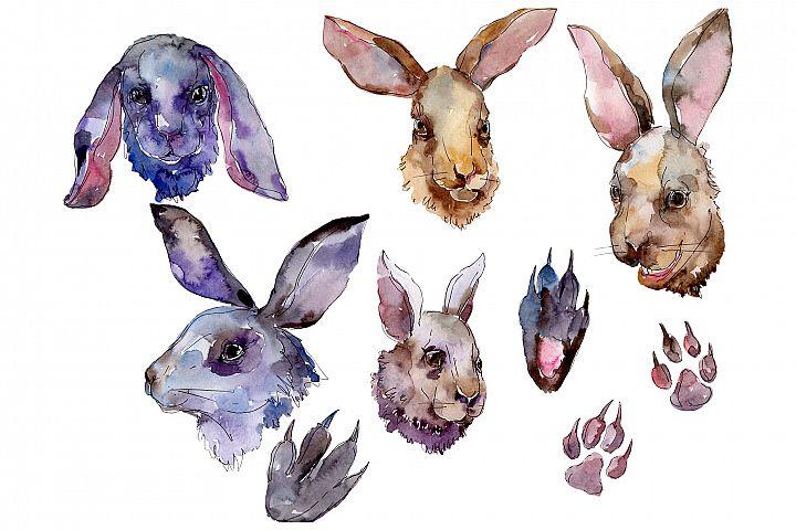 Farm animals rabbit head Watercolor png