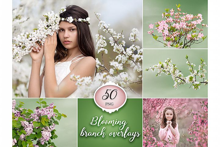 50 Blooming Tree Branch Overlays