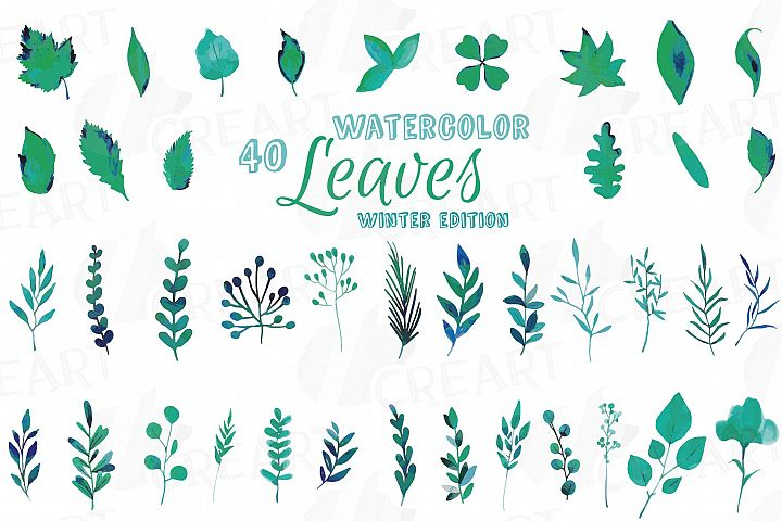 Winter leaves and branches watercolor clip art pack