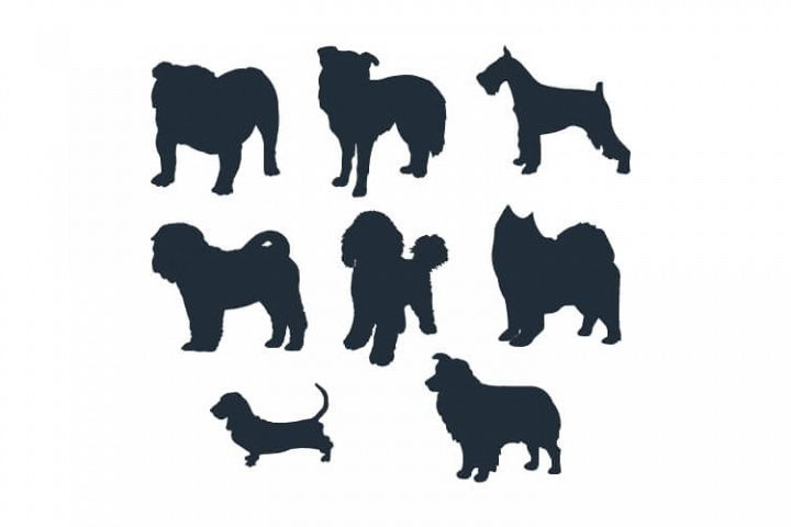 Dog Silhouette Embroidery Bundle Medium Dog Breed Set of 8