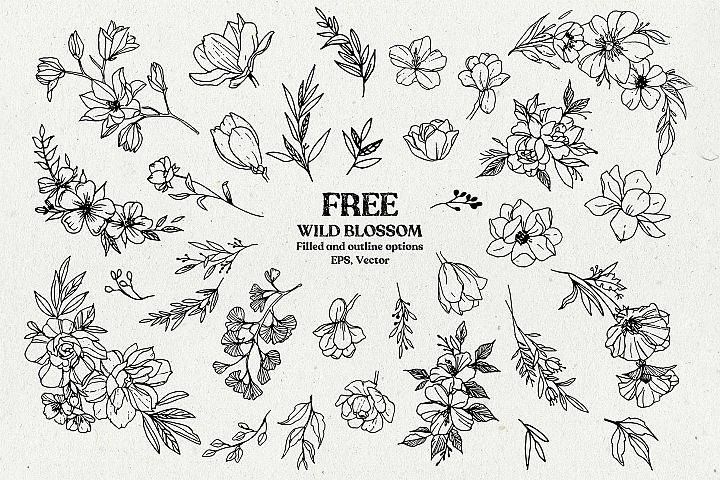 Wild Blossom - Hand sketched Floral & Botanical elements