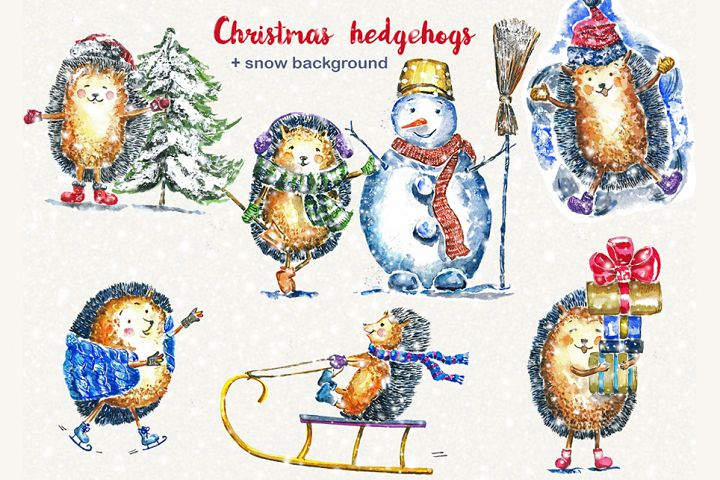Christmas clipart, hedgehog, watercolor clipart