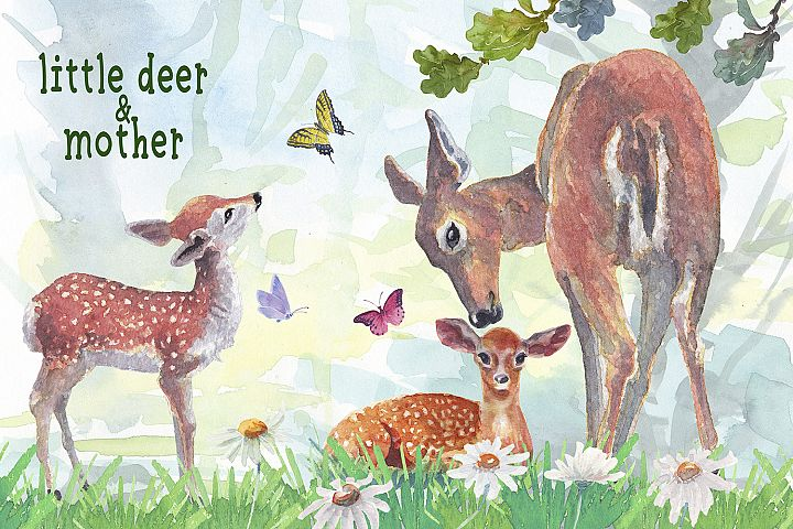 little deer & mother watercolor clipart set