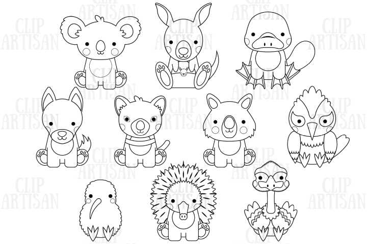 Australian Animals Clipart, Kiwi Animals, Digital Stamp