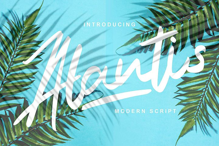 Alantis | Modern Script Font