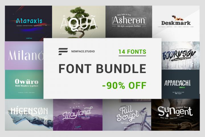 14 font bundle by Newface -90 off