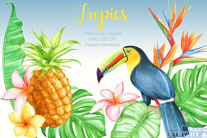 Watercolor tropical clipartS
