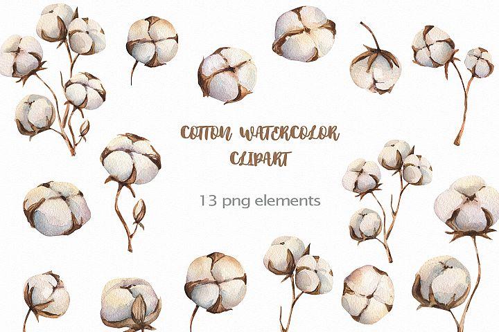 Watercolour Cotton clipart, branches winter watercolor