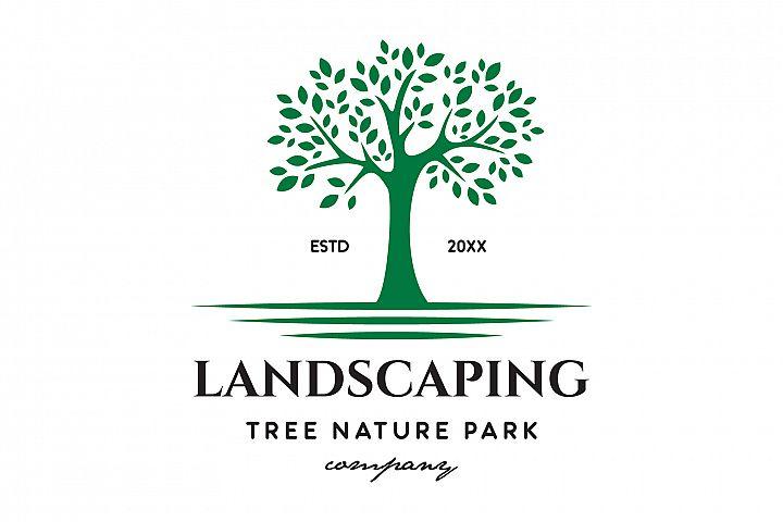 Tree Evergreen Logo