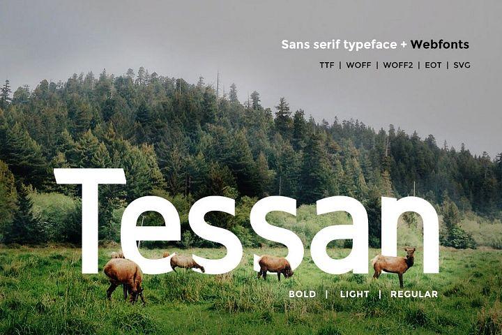 Tessan Sans - Modern Typeface WebFont