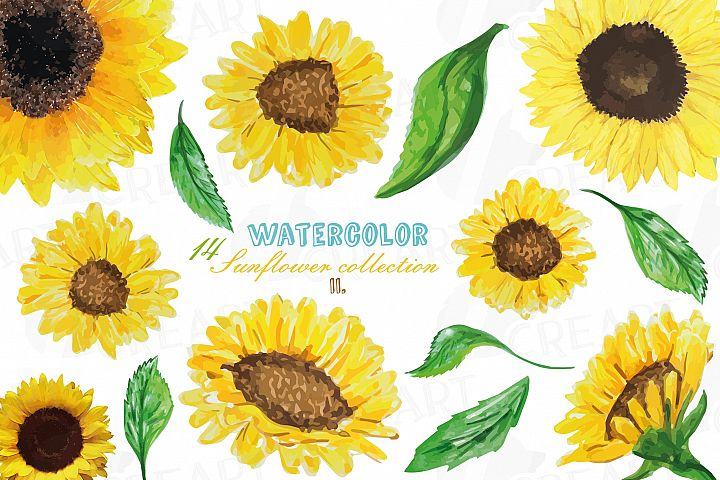Sunflowers watercolor clip art pack 2, watercolor sunflower