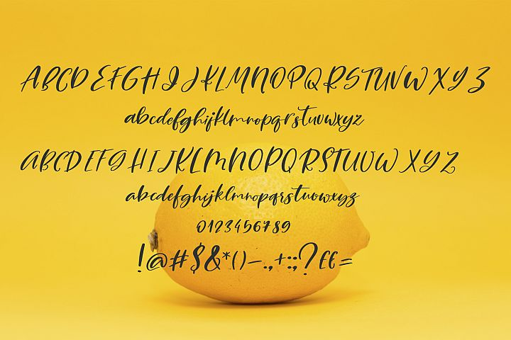 Lemony Cheesecake Font Duo example image 5