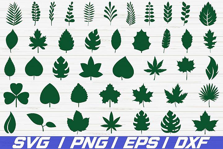 42 Paper Leaves / SVG / Cut File / Leaf Templates / Cricut