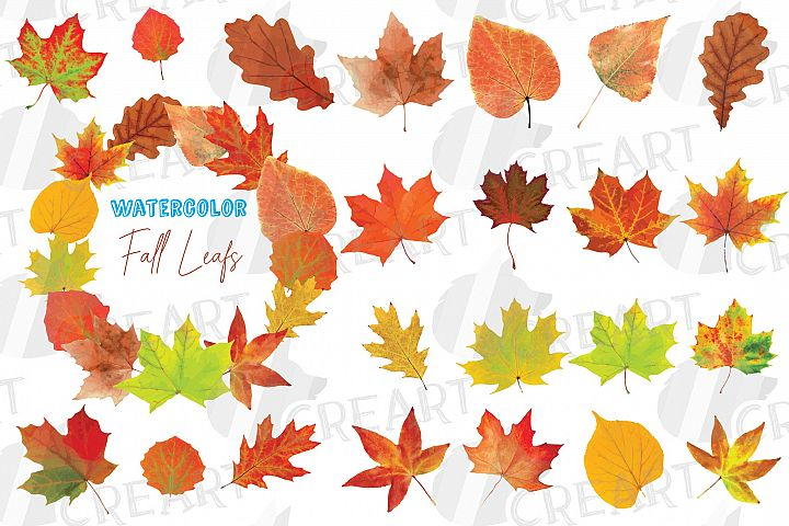 Autumn leaves decor clip art. Printable watercolor fall leaf