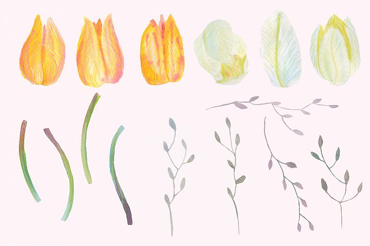 Floral Design Pack (watercolor & pastel) - Free Design of The Week Design 8