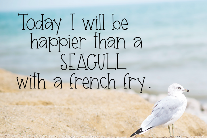 Seagull - A Fun Handwritten Font - Free Font of The Week Design 5