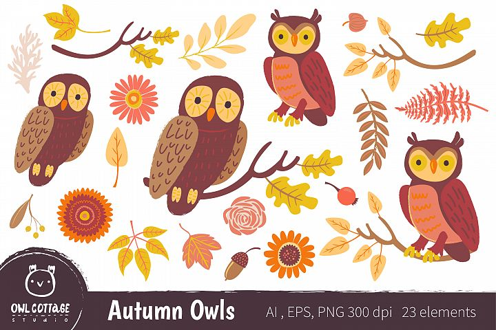 Autumn Owls and Fall Elements, Woodland Animals Clipart