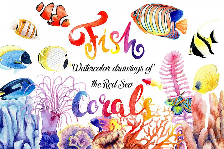 Watercolor drawings of bright fish and corals