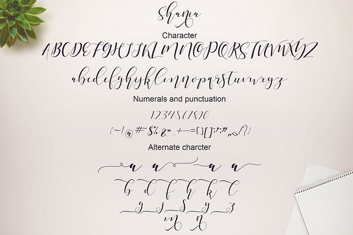 Shania Sweet Calligraphy Modern - Free Font of The Week Design6